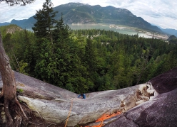 Climbing at Squamish: the first pitch of Skywalker