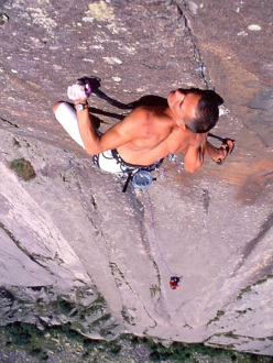 Manolo su Baby Rabbit 8b Tognazza