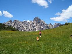 Monte Pramper - Zoldo Dolomites