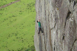 Tremadog  Strawberry E7