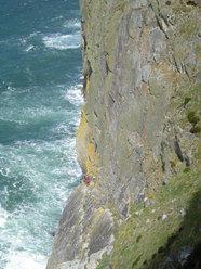 Sea Cliff Climbers