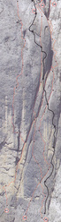 Detail of the lower section of Bruderliebe (800m, 8b/8b+, Hansjörg & Vitus Auer 08/2011), Marmolada, Dolomites