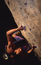 Alessandro Jolly Lamberti, Pink Rabbit, Grotti