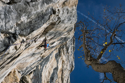David Lama repeating Stoamanndl 8b Sonnwand, Austria