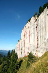 Baule, Vette Feltrine, Dolomites. The new routes established by Manolo from left to right: 1) Osteria Tacicavallo 8a; 2) Il cane veste Bvlgari 6b+; 3) L'orso boz 7c; 4) Garibaldi 8b; 5) Crosnobel 6a+