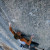 Mayan Smith-Gobat su L'arcademicien 8c, Ceuse, Francia