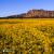 Alba su Mount Arapiles, Victoria, Australia.