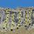 Le vie tracciate da Roberto Sgubin e compagni sulla Prej d'le Stejle (parete delle Selle), Cima Battaglia, Vallone di Scalaro, Piemonte