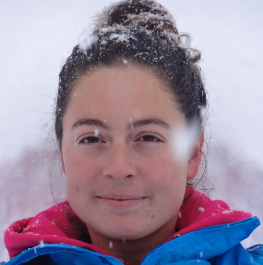 Gaëlle Cavalié found alive below the summit of Aiguille Verte