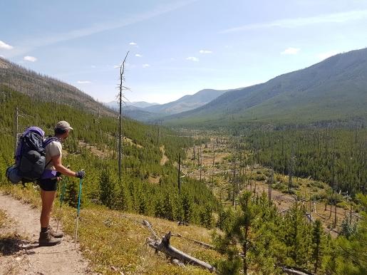 Continental Divide Trail, l'affascinate trekking USA lungo la cresta delle Rocky Mountains