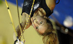 IX Climbing World Championship Aviles: full results