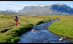 Kungsleden, il trekking dei grandi orizzonti