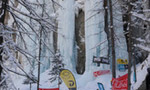 X-Ice Meeting 2012 a Ceresole Reale
