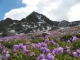 Corno dei Tre Signori in Alta Valtellina