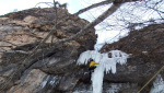 Nuove vie di misto in Val Daone e Val di Ledro per Tameni e Tamburini