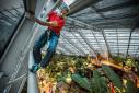 Manolo arrampica al MUSE di Trento
