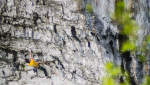 Ben Moon storms through Rainshadow 9a at Malham Cove