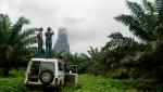 São Tomé, Africa - Claim Freedom film