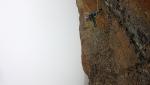Federica Mingolla a-vista su Sturm und Drang al Becco di Valsoera