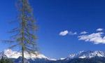 Altopiano del Renon - escursioni doc in Alto Adige