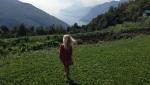 Trekking con vista sul Lago di Garda