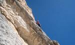 Ruggero Zardini, free ascents in Tofana and Becco di Mezzodì