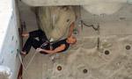 Campionato italiano di arrampicata sportiva delle Guide Alpine a Campitello di Fassa