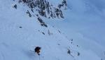 Tonale new ski descent by Miori and Mascaro down Punta Castellaccio
