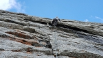Pizzo Badile Free Nardella climbed by Marcel Schenk, David Hefti