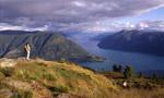 Fjordtrek: Norvegia da vertigini
