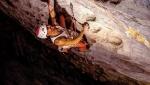 Edu Marín su The Clinic, la via d'arrampicata sportiva più difficile della Cina