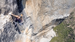 Bronwyn Hodgins ripete Golden Gate su El Capitan in Yosemite