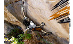 Scalatabel Climbing Festival France - Steve McClure 8b flash