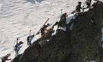 Dalla Pierra Menta alla Grande Course... come cambia lo ski alp?